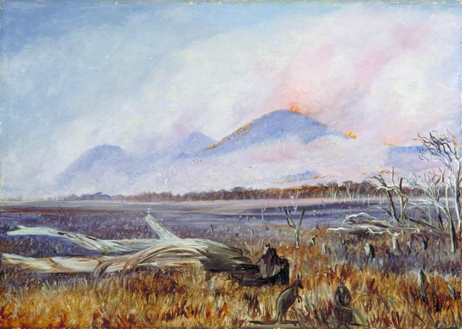 A Bush Fire at Sunset, Queensland - Marianne North
