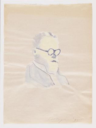 A Flemish Intellectual - Luc Tuymans