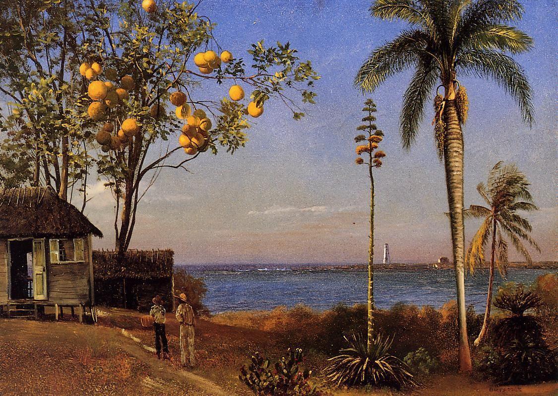 A View in the Bahamas - Albert Bierstadt