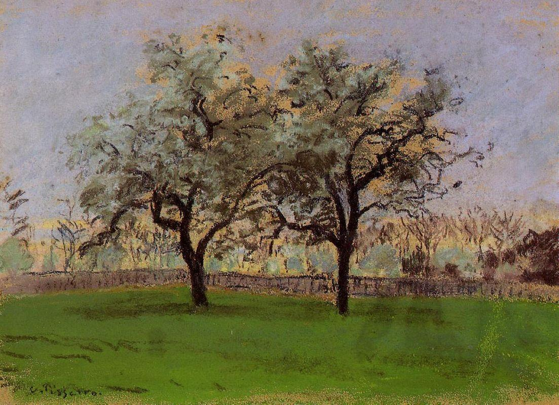 Apples Trees at Pontoise - Camille Pissarro