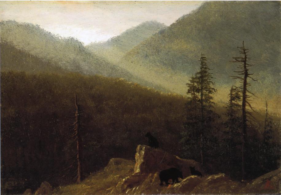 Bears in the Wilderness - Albert Bierstadt