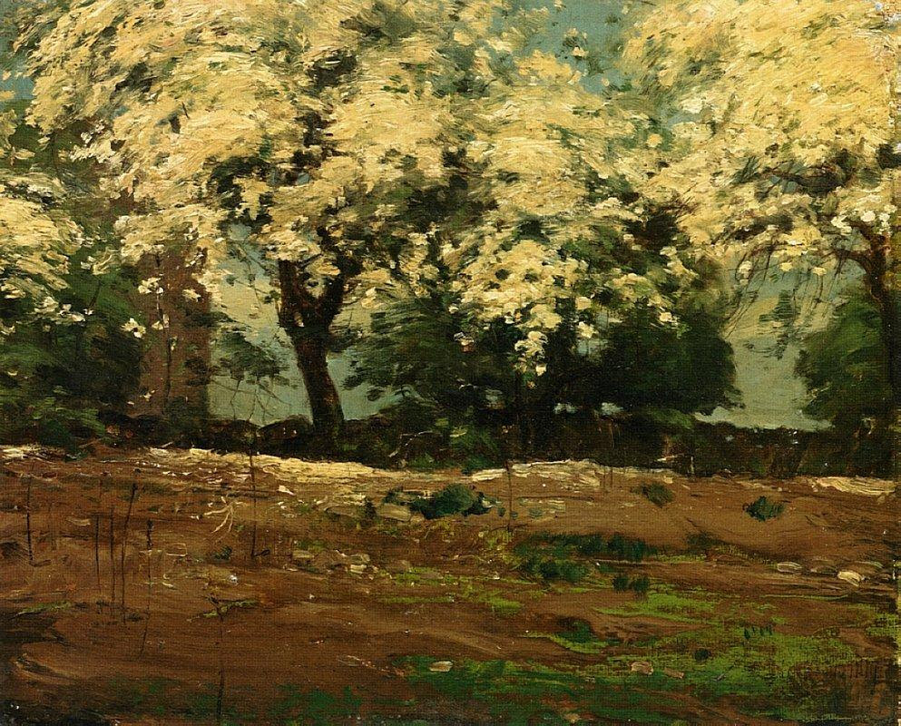 Blossoms - Childe Hassam