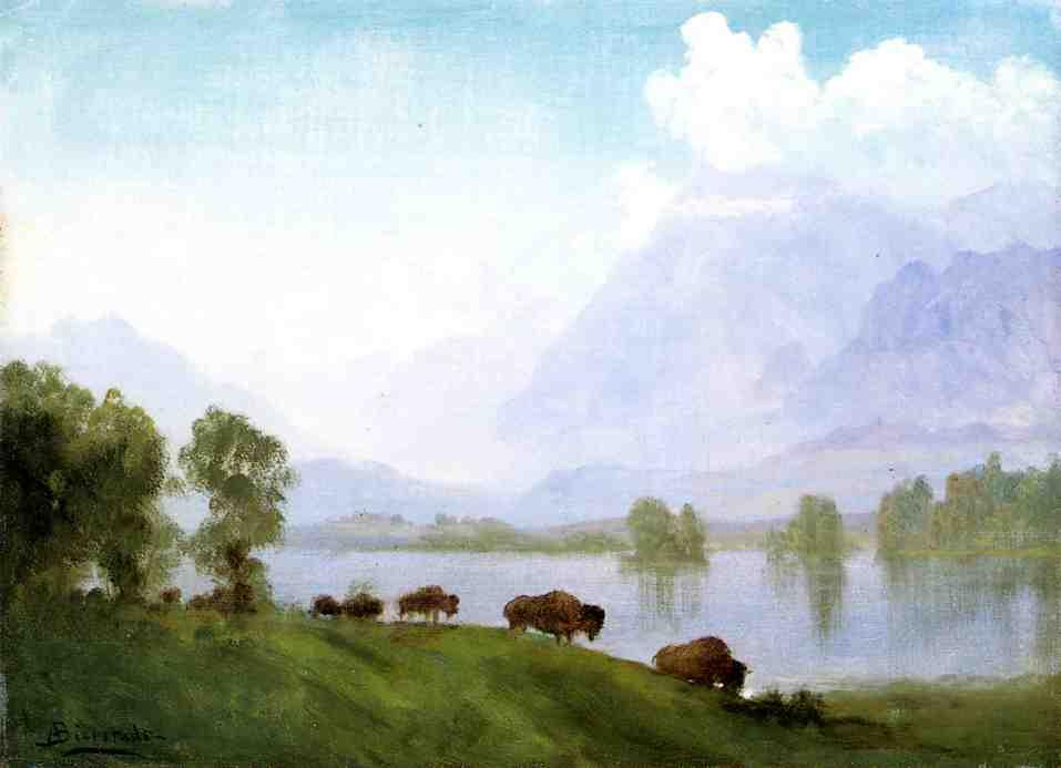 Buffalo Country - Albert Bierstadt