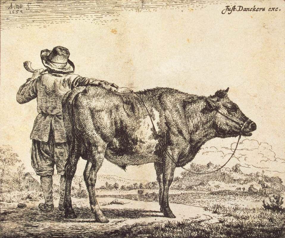 Bull - Adriaen van de Velde