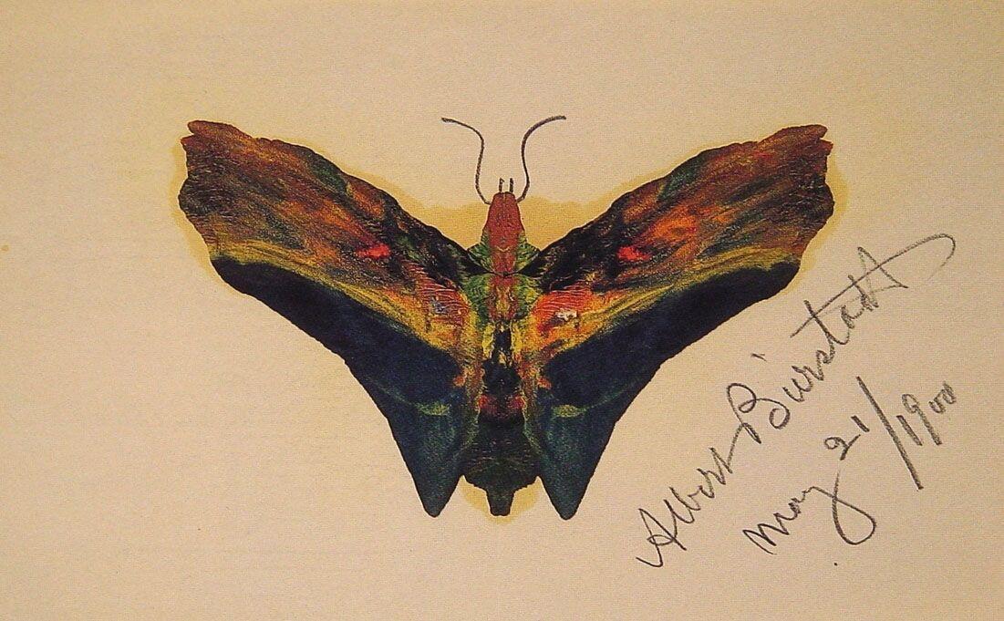 Butterfly (second version) - Albert Bierstadt