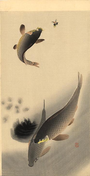 Carp and Bee - Ohara Koson