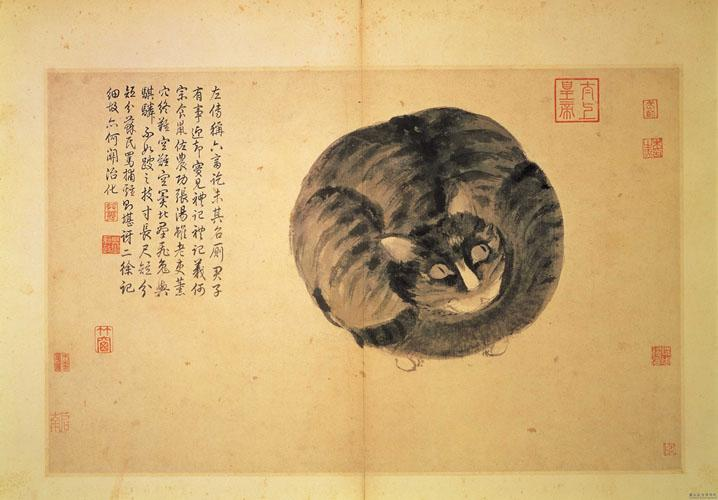 Cat (Sketches from Life) - Shen Zhou