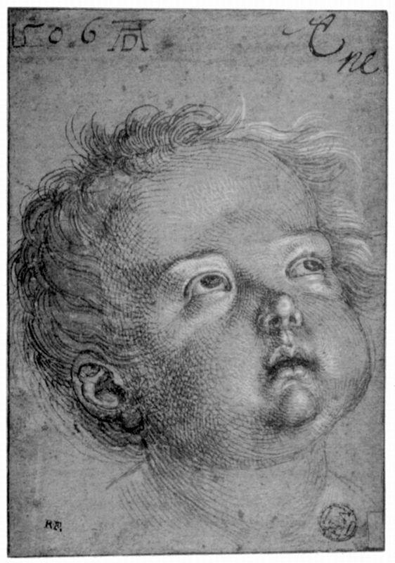 Child's Head - Albrecht Durer