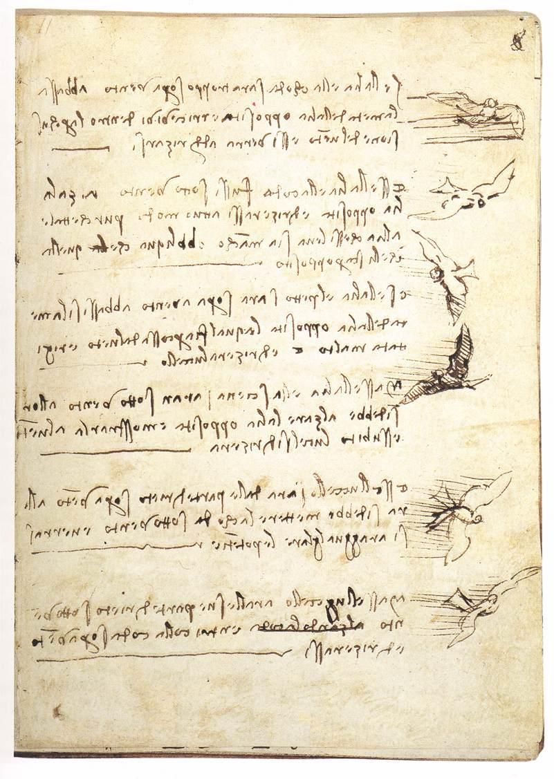 Codex on the flight of birds - Leonardo da Vinci