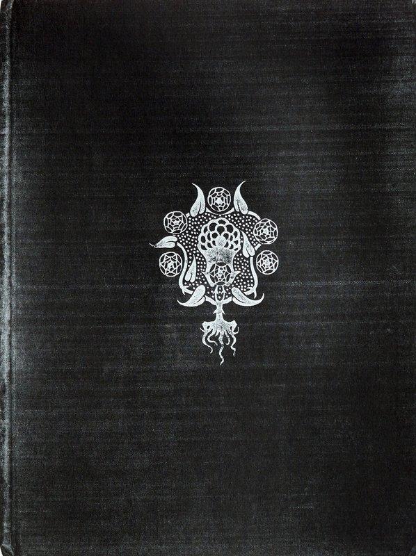 Cover 1894 - Aubrey Beardsley
