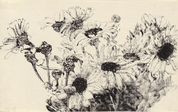 Daisies - Avigdor Arikha