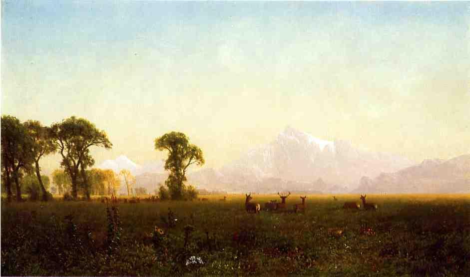 Deer Grazing, Grand Tetons, Wyoming - Albert Bierstadt