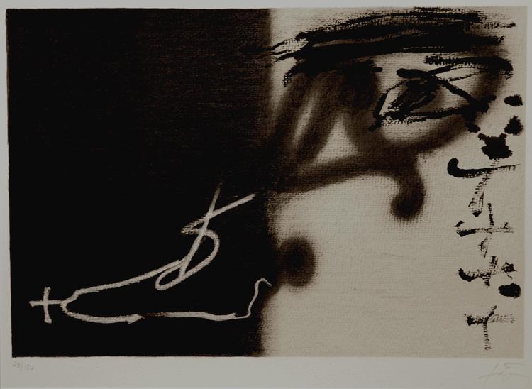 Divise - Antoni Tapies