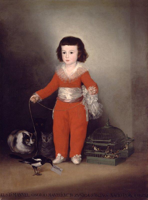Don Manuel Osorio Manrique de Zuniga - Francisco Goya