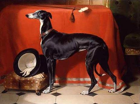 Eos, A Favorite Greyhound of Prince Albert - Edwin Henry Landseer