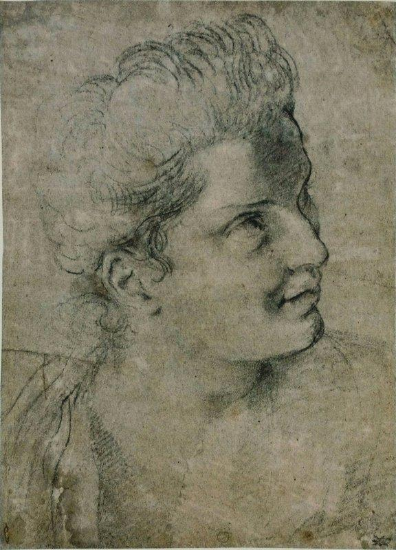 Face a woman turned towards the right - Annibale Carracci