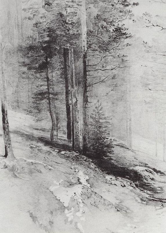 Forest - Aleksey Savrasov