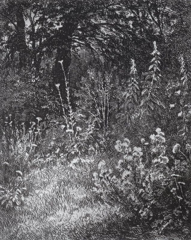 Forest flowers - Ivan Shishkin