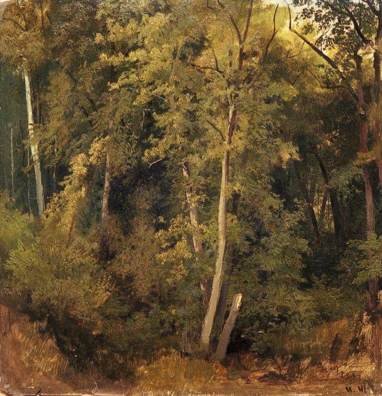 Forest landscape - Arkhip Kuindzhi