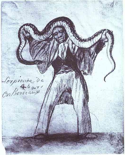 Four Yard Long Snake in Bordeaux - Francisco Goya