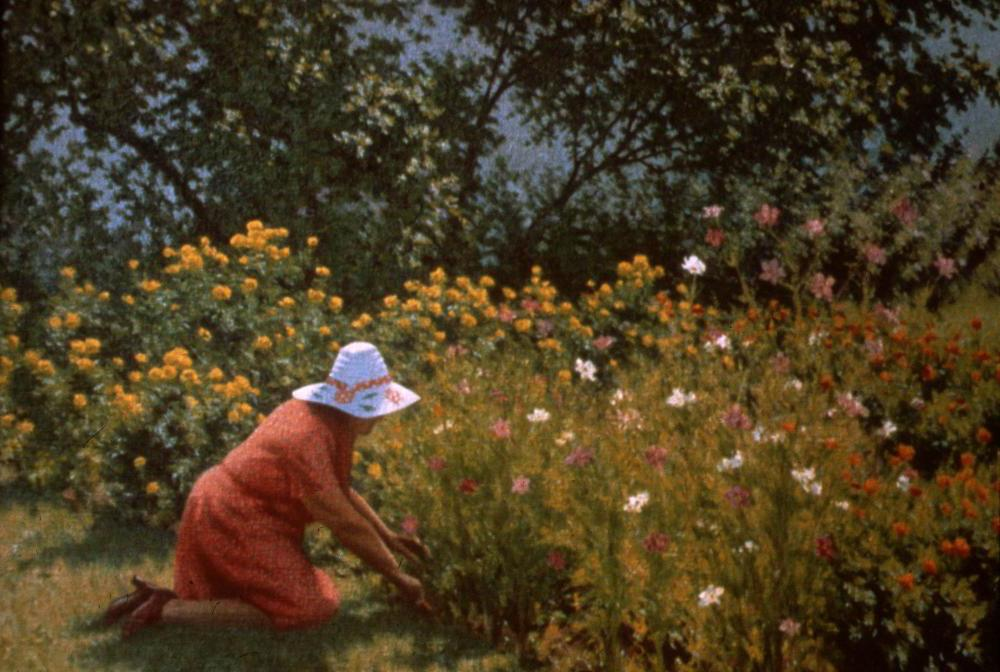Gathering Flowers - Richard Whitney