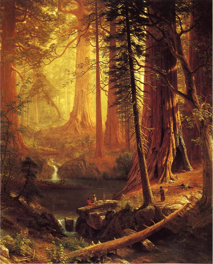 Giant Redwood Trees of California - Albert Bierstadt