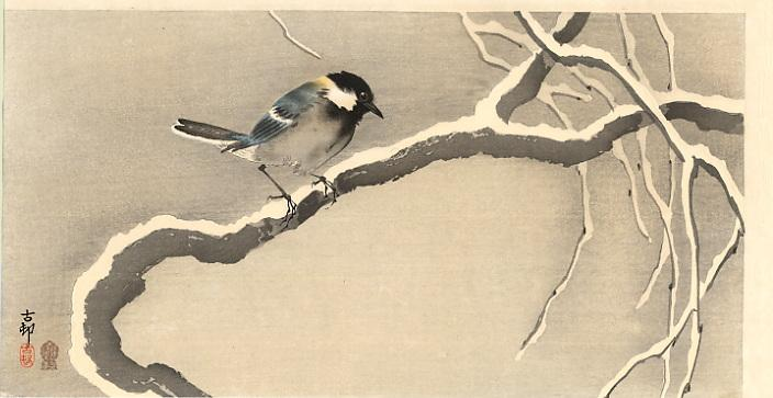 Giant Tit on Snowy Branch - Ohara Koson