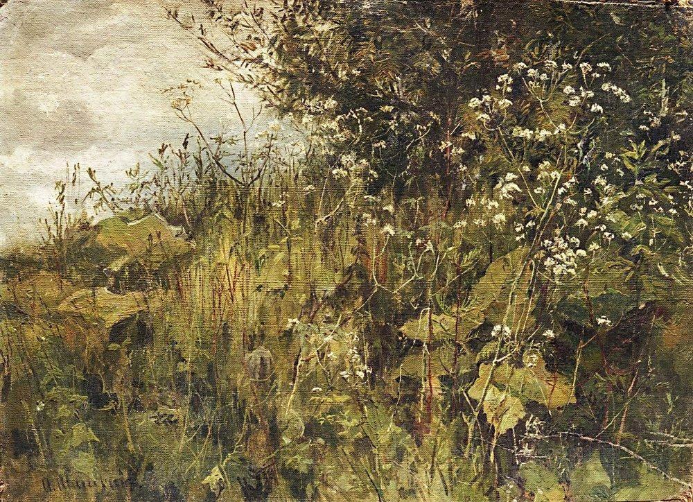 Goutweed-grass - Ivan Shishkin