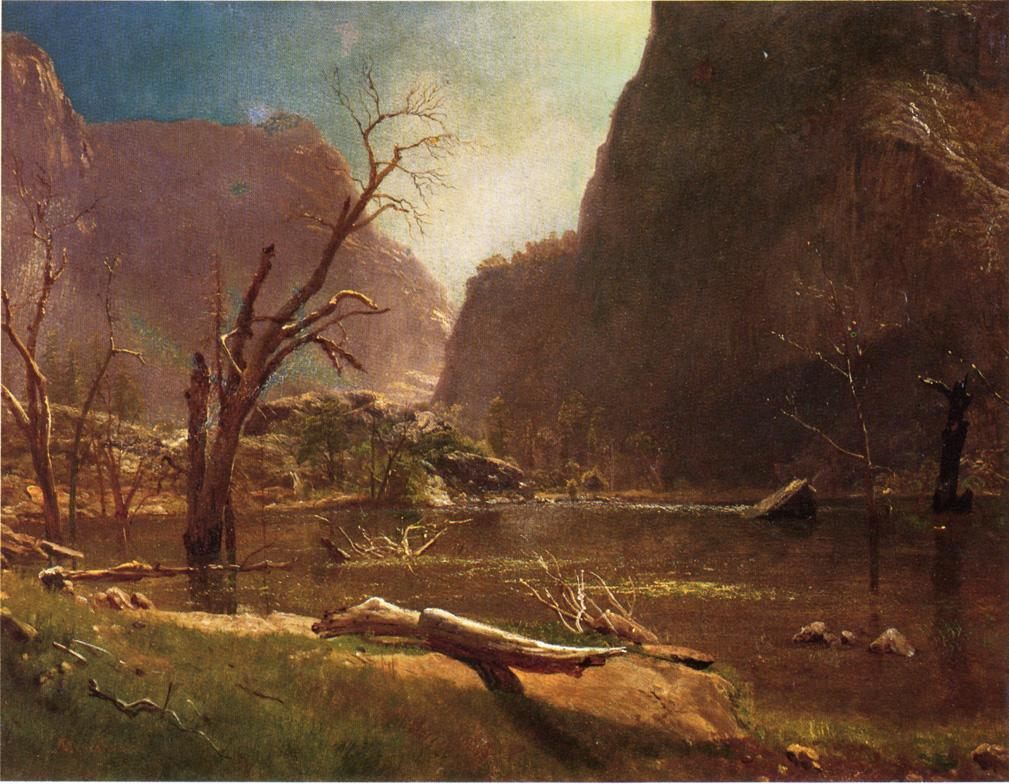Hatch Hatchy Valley, California - Albert Bierstadt