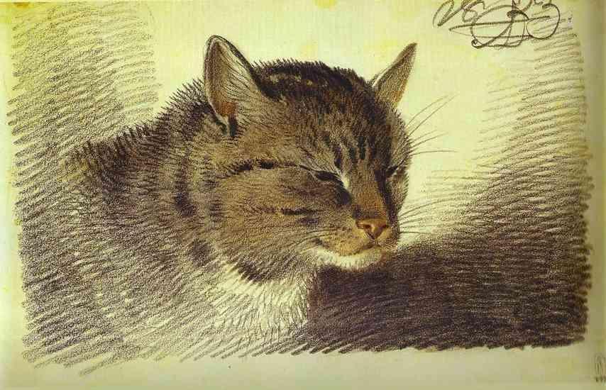 Head of a Cat - Alexander Orlowski