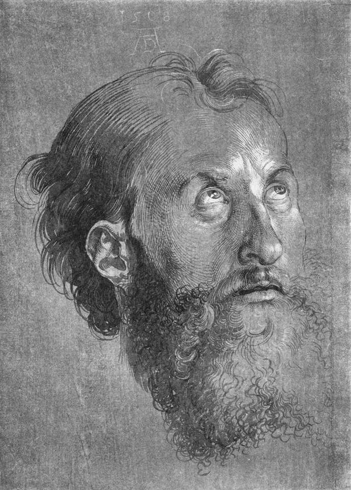 Head of an Apostle Looking Upward - Albrecht Durer