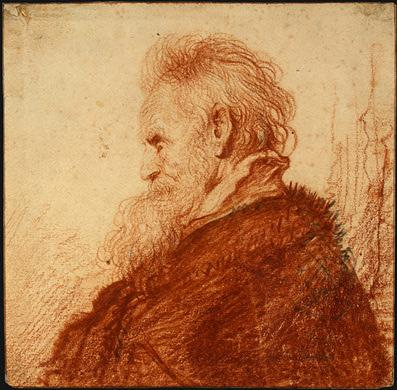 Head of an Old Man - Leonardo da Vinci