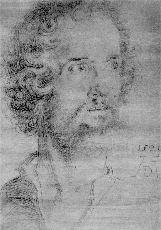 Head of the Mark - Albrecht Durer