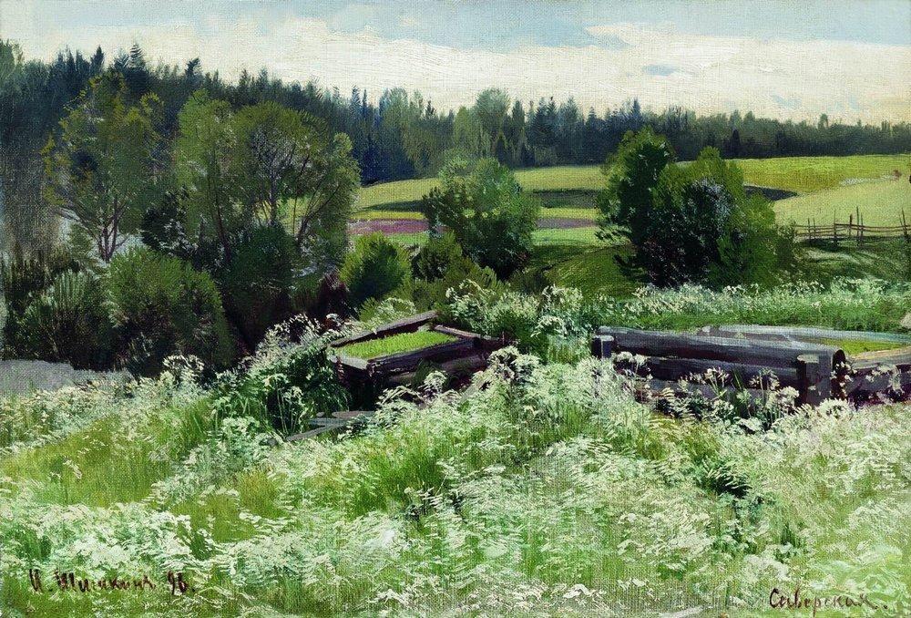 In Siverskaya - Ivan Shishkin