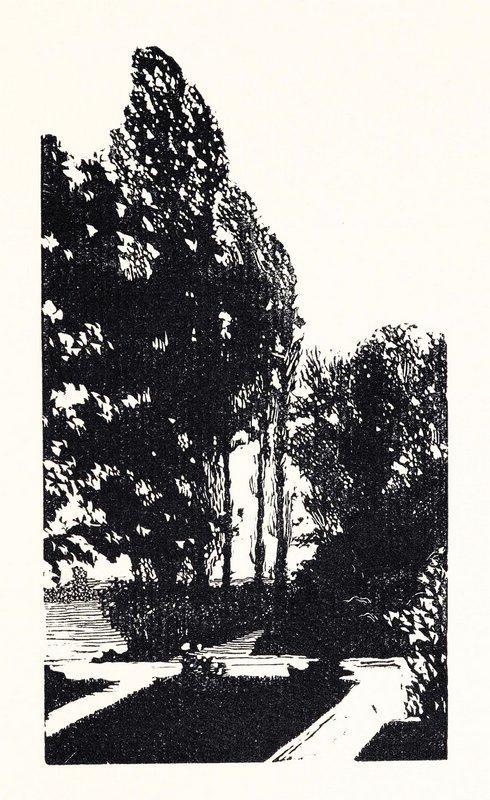 In the park. Poplar trees. - Anna Ostroumova-Lebedeva