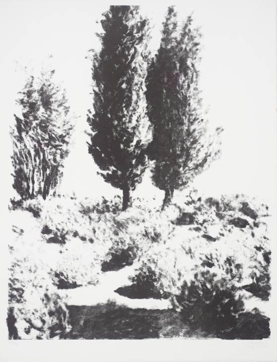 Jerusalem Cypresses and Lavender - Avigdor Arikha