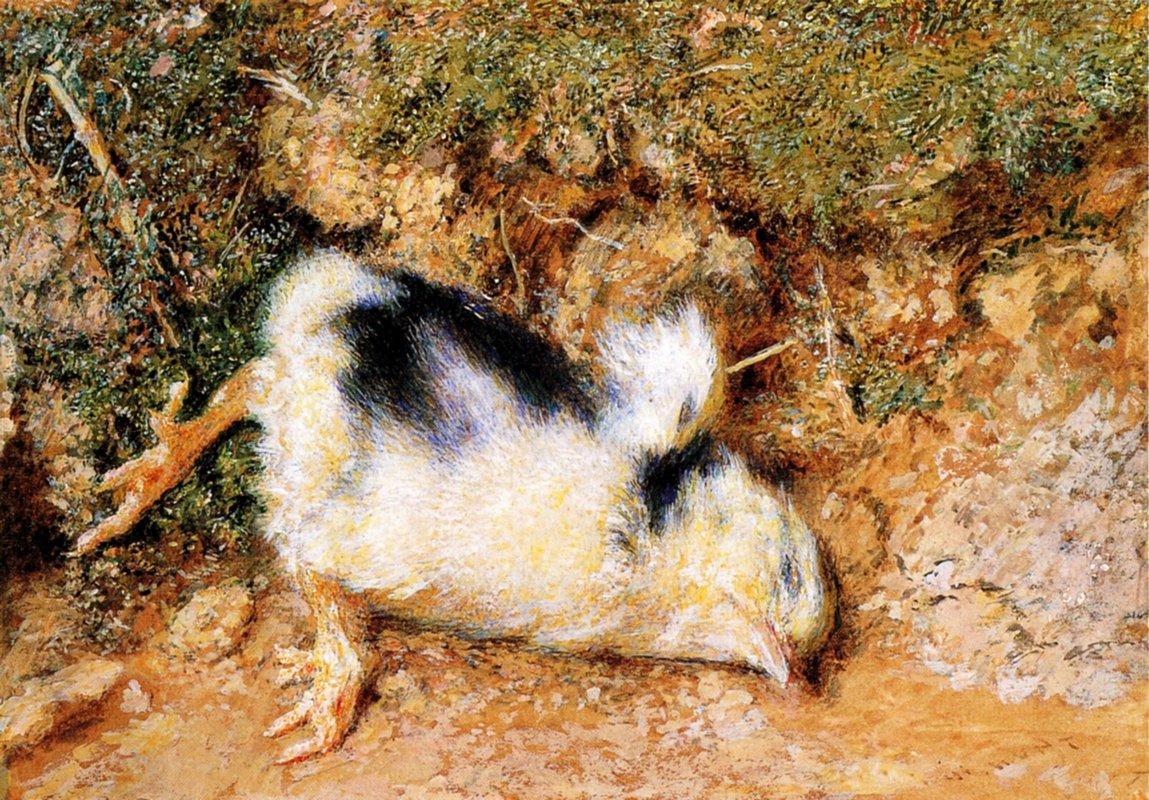 John Ruskin's dead chick - William Holman Hunt