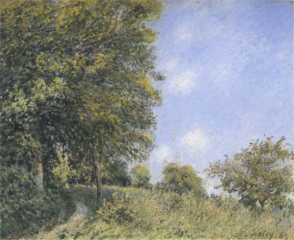 July Afternoon near the Forest - Alfred Sisley