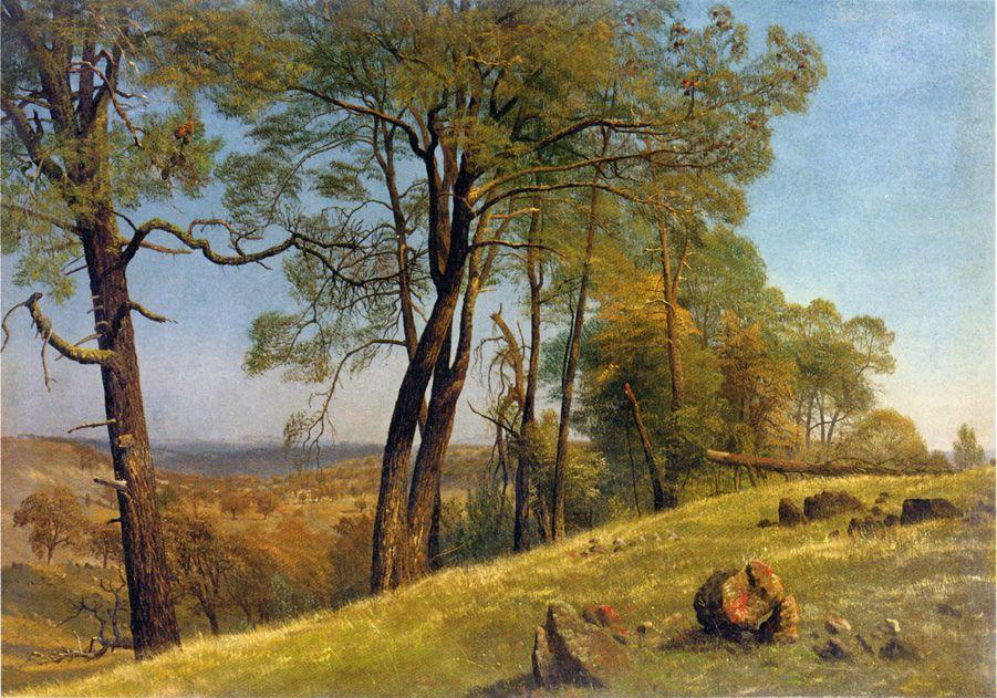 Landscape, Rockland County, California - Albert Bierstadt