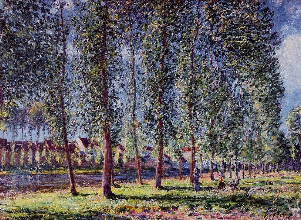 Lane of Poplars at Moret - Alfred Sisley
