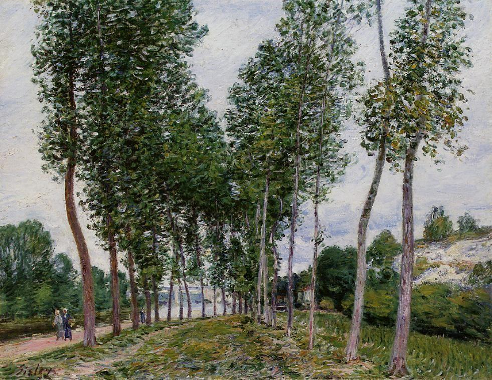 Lane of Poplars on the Banks of the Loing - Alfred Sisley