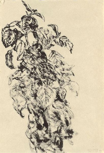 Leaves - Avigdor Arikha