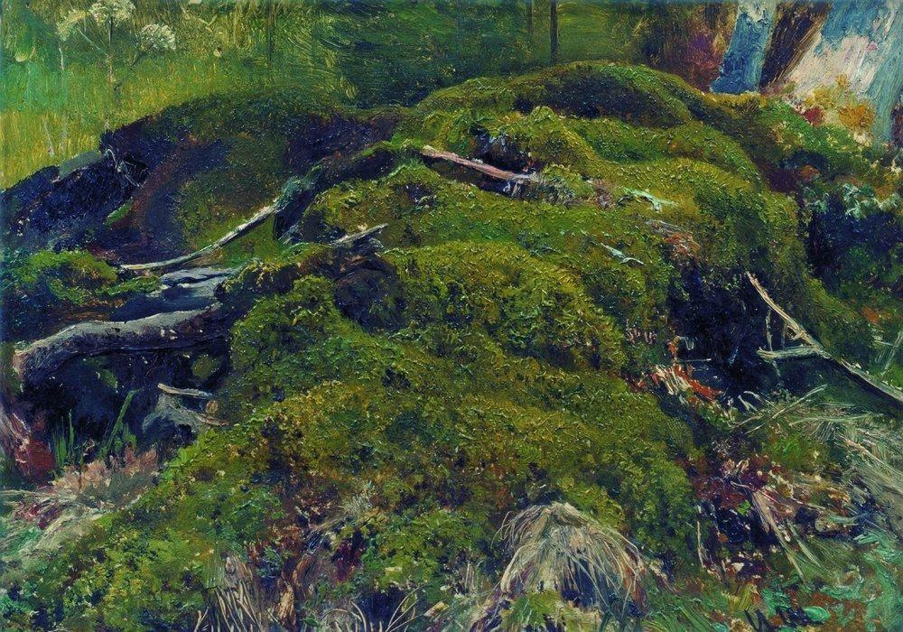 Moss. Roots - Ivan Shishkin