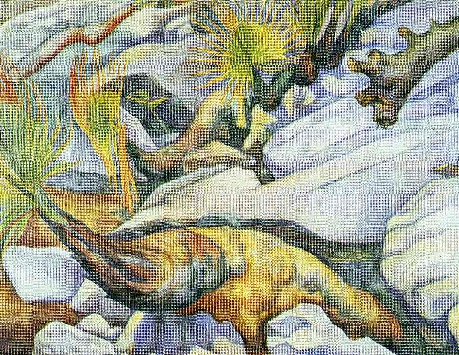 Not detected - Diego Rivera