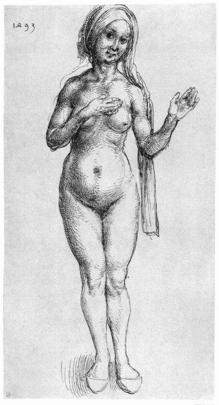 Nude - Albrecht Durer