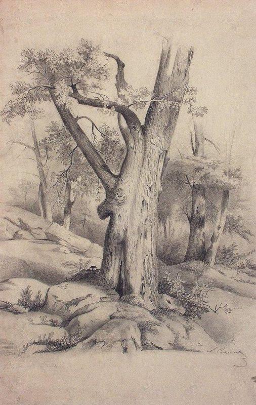 Oak - Aleksey Savrasov