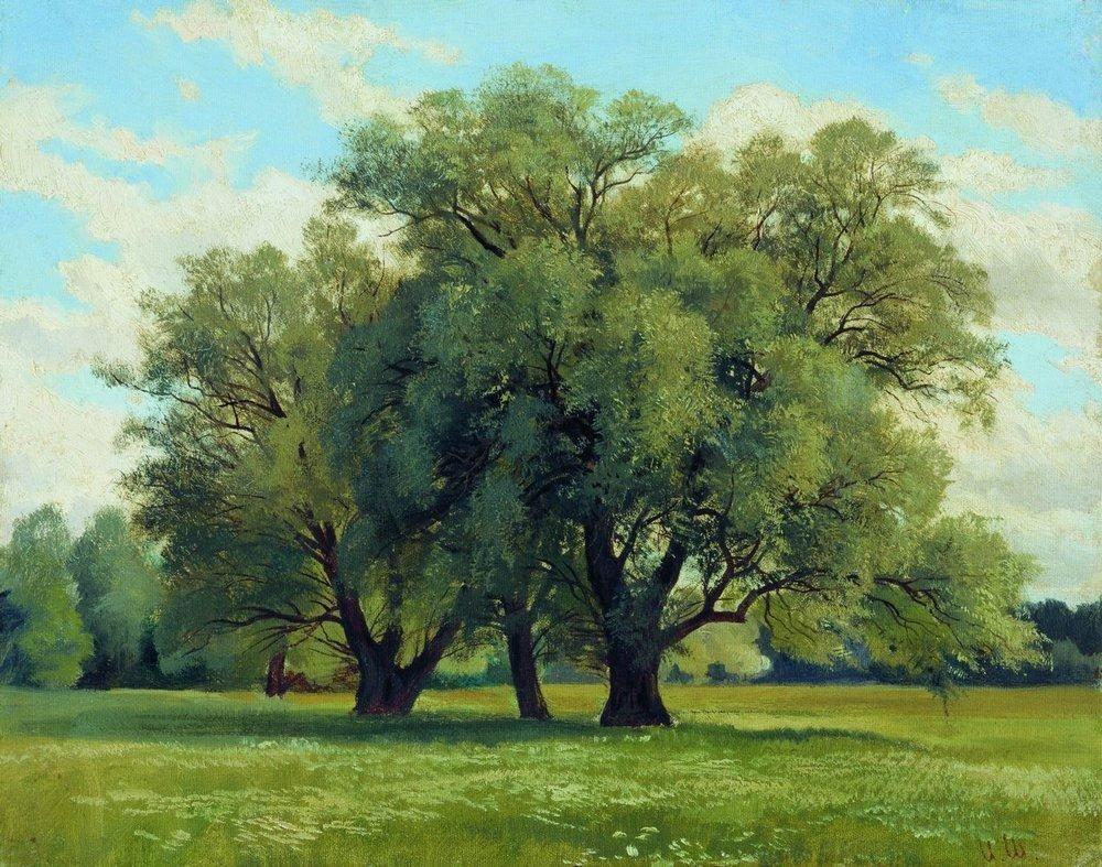 Oaks - Fyodor Vasilyev