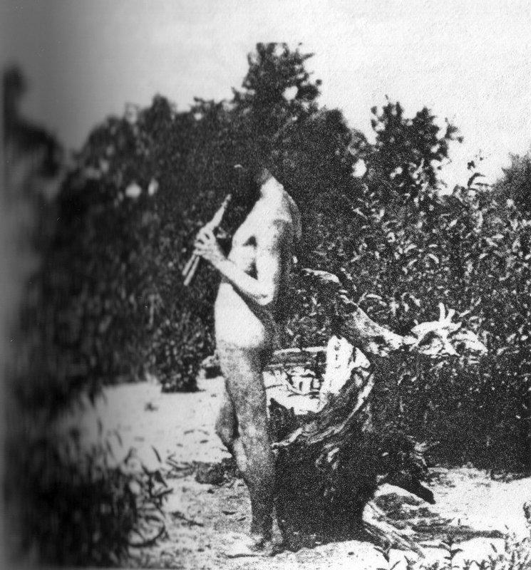 Photograph  - Thomas Eakins