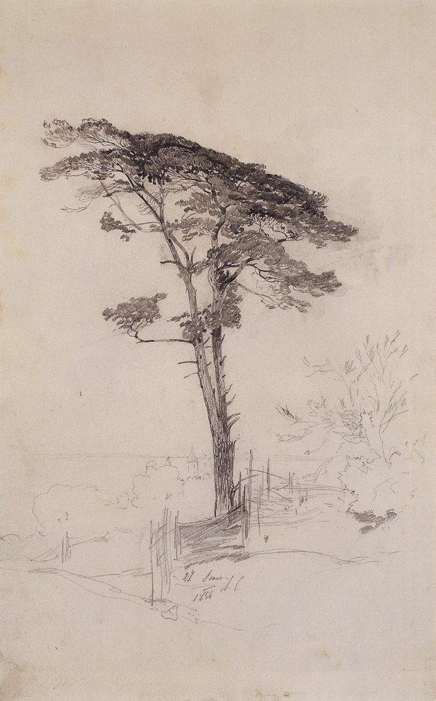 Pine - Aleksey Savrasov