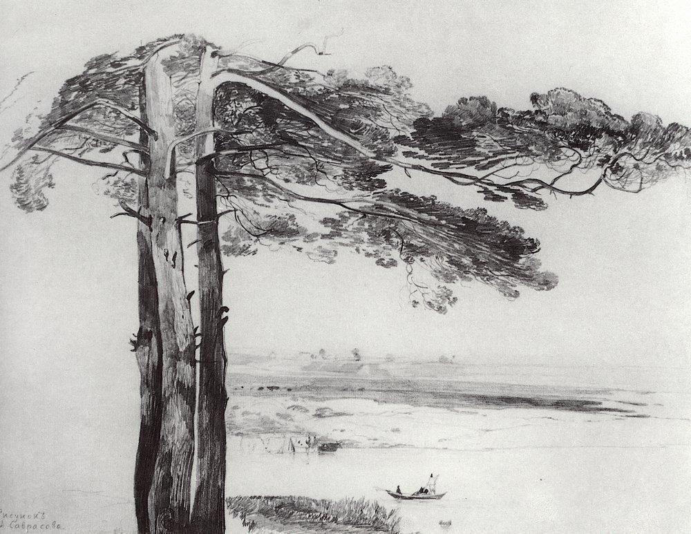 Pine from Gusareva - Aleksey Savrasov
